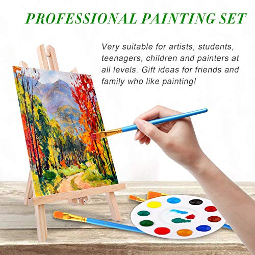 Acrylic Painting Set with 1 Wooden Easel 3 Canvas Panels30