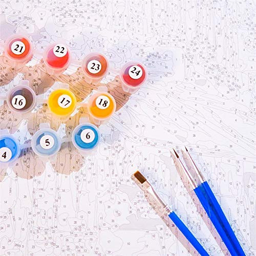 Adult Paint by Numbers, Komking DIY Paint by Number Kits on