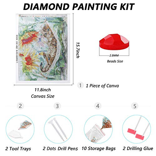 Diamond Art Kits for Adults Paint by Numbers for Kids Ages