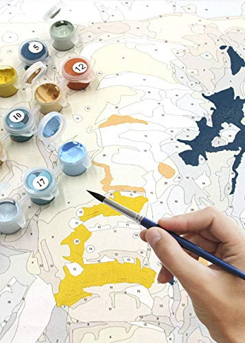 Slody Paint by Numbers for Adults, DIY Elephant Oil Number