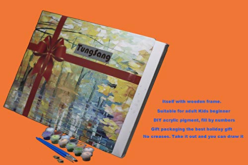 Tungsang Frame Paint by Numbers DIY Oil Paint Works Paint by